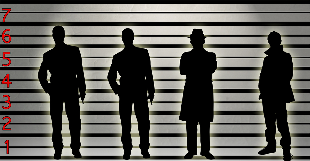 What is a Police Lineup?